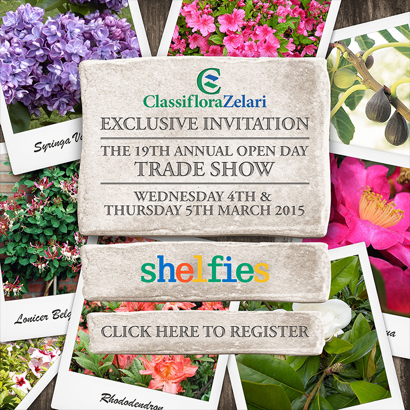 ClassifloraZelari Exclusive Invitation: The 19th Annual Open Day Trade Show. Wednesday 4th & Thursday 5th March. Click here to register.
